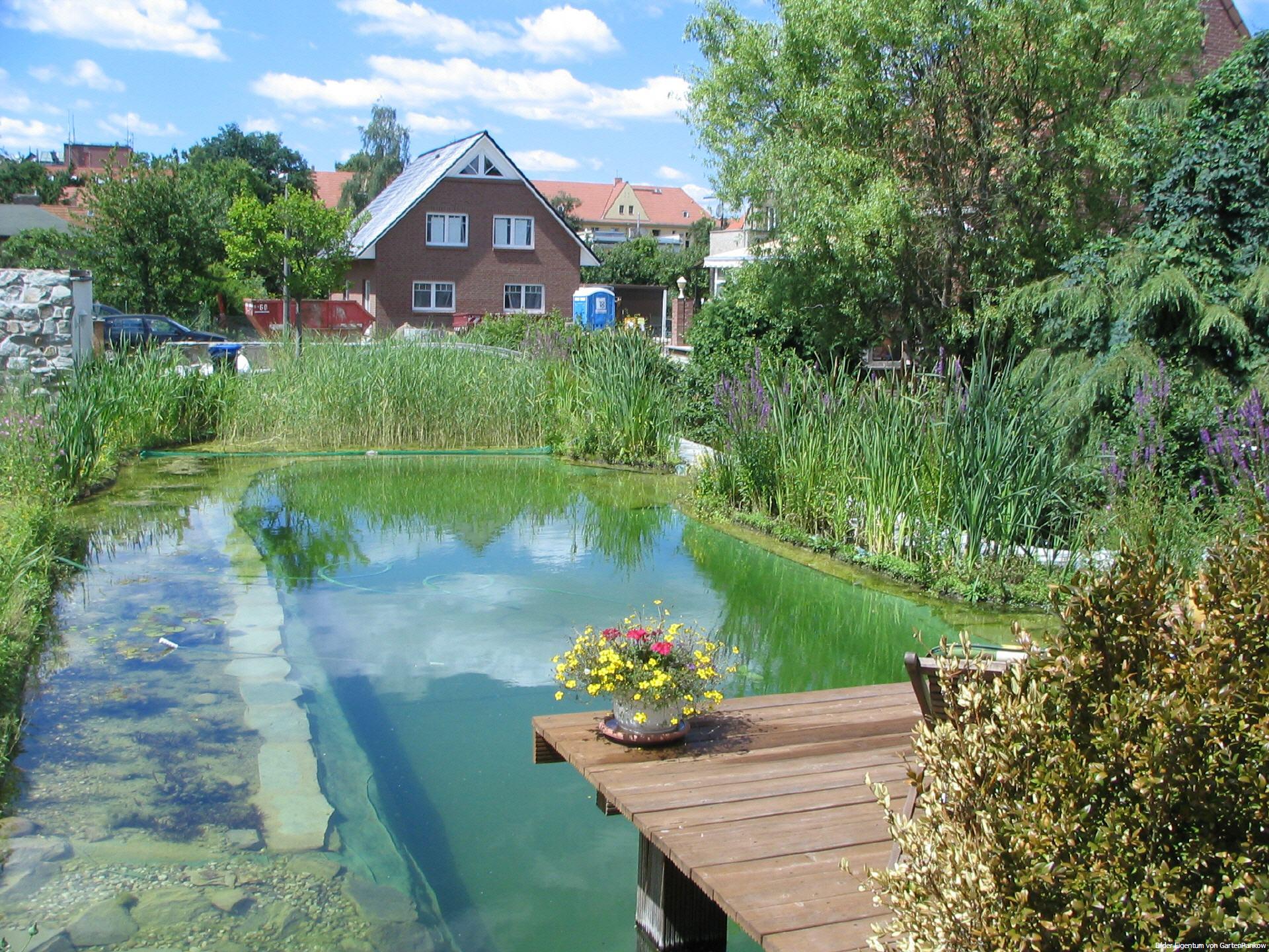 Gartenpankow for Schwimmteich